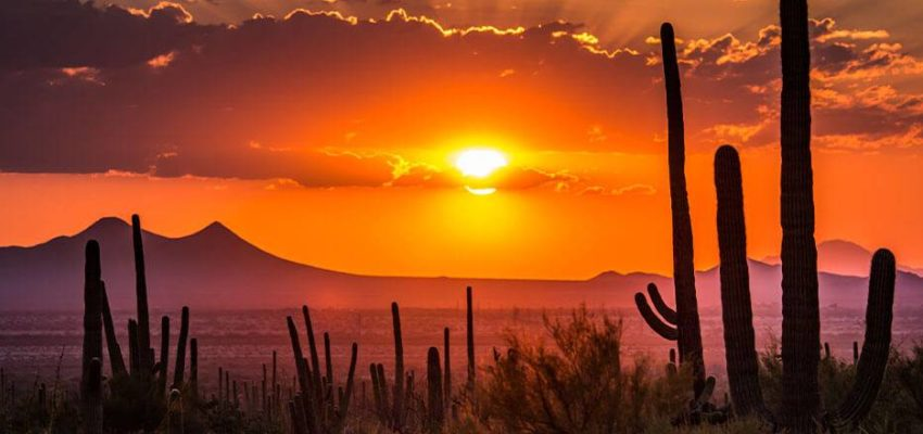 Arizona Relocation Guide: What To Know About The Copper State Before You Move