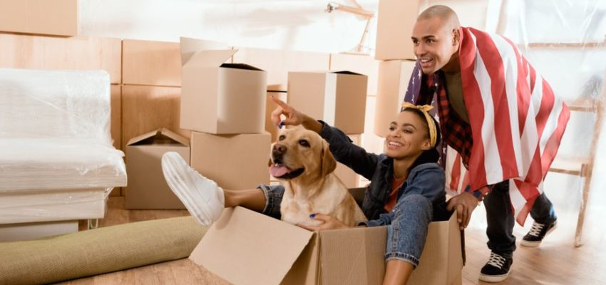 House Packing with Pets: Checklist for a Successful Move